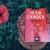"""Ce ne-a scris Silvia Chindea după ce """"i-am recenzat"""" romanul """"Moarte în Peru"""""""