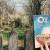 """""""Deodată în adâncul pădurii. O poveste"""" de Amos Oz"""