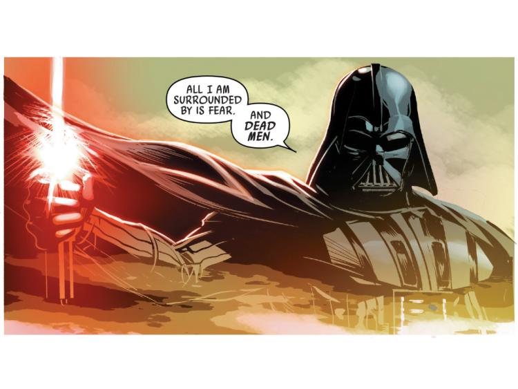 Star Wars Vader Down - foto Cub