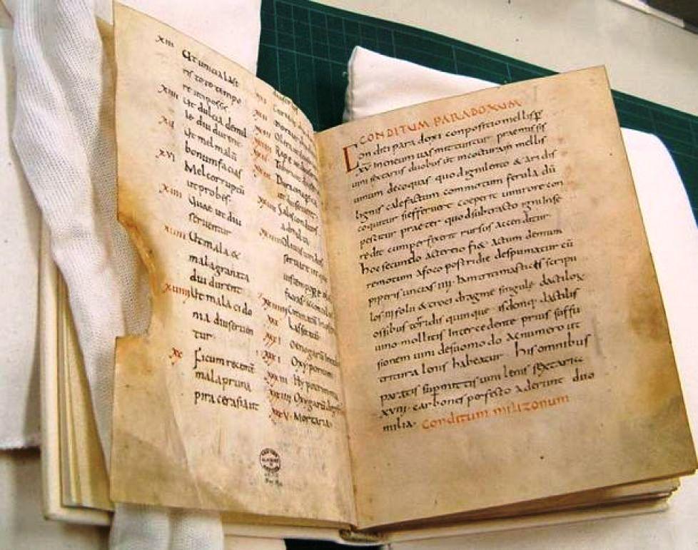 Copie a manuscrisului lui Apicius de la Mănăstirea Fulda din Germania din anul 900 dHR, Foto: ancient-origins net